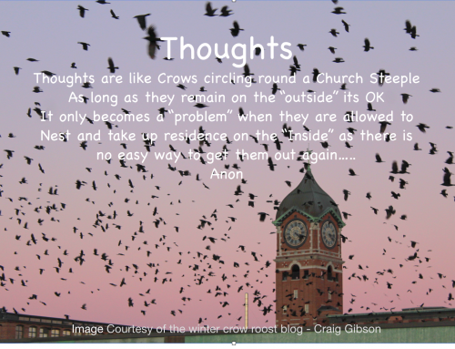 """Thoughts"" on Crows!"
