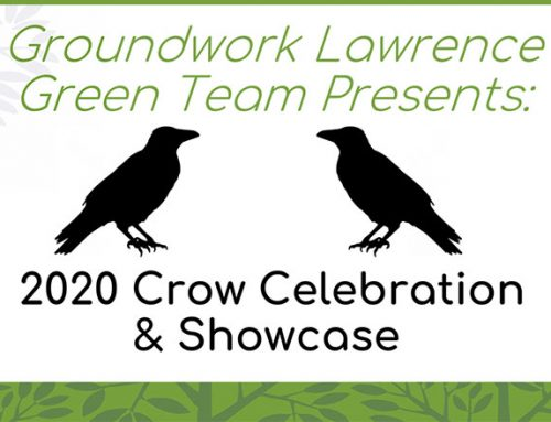The Green Team: Crow Project Presentation