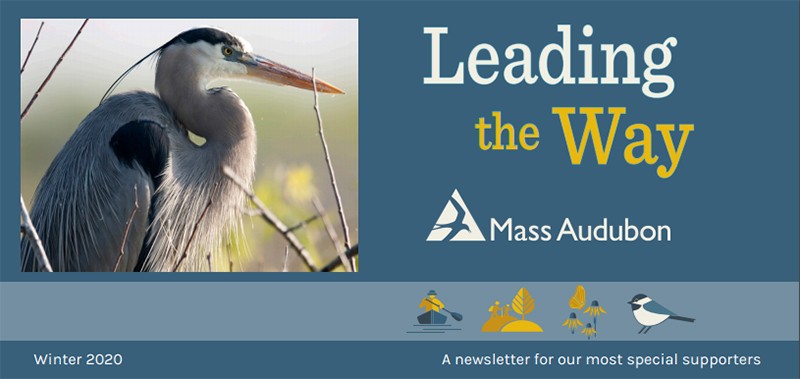 MassAudubon Winter 2020 Newsletter