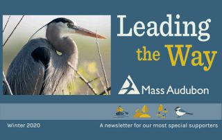 MassAudubon Leading the Way Winter 2020
